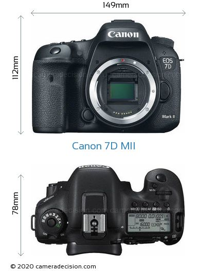 Canon 7D MII Body Size Dimensions
