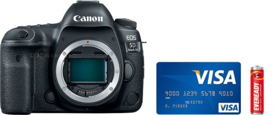 Canon 5D MIV Real Life Body Size Comparison