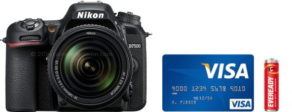 Nikon D7500 Real Life Body Size Comparison