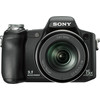 Sony H50