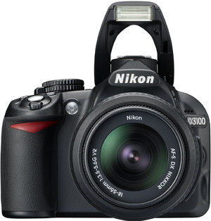 Nikon D3100 flash