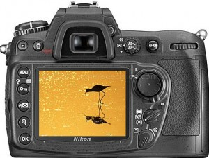 Nikon D300 back view and LCD