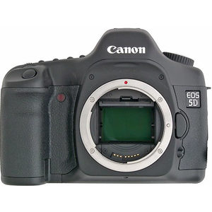 Canon 5D Vs Nikon D810 Detailed Comparison