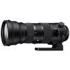 Sigma 150-600mm F5-6.3 DG OS HSM C