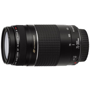 Canon EF 75-300mm f4.0-5.6 III USM