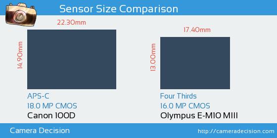 Canon 100D vs Olympus E-M10 MIII Sensor Size Comparison
