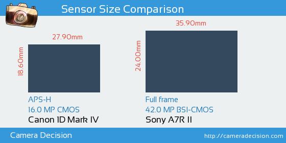 Canon 1D MIV vs Sony A7R II Sensor Size Comparison
