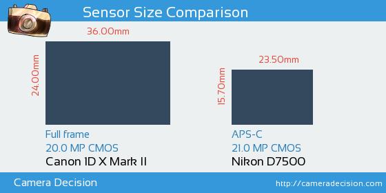 Canon 1D X II vs Nikon D7500 Sensor Size Comparison