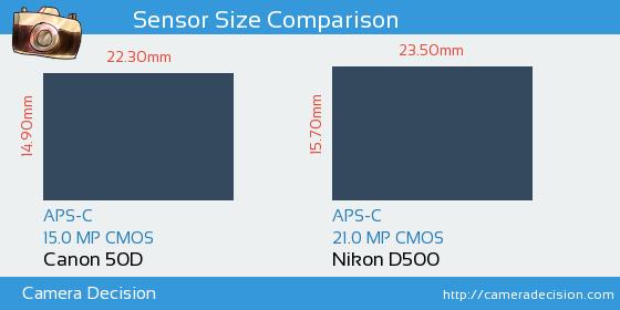 Canon 50D vs Nikon D500 Sensor Size Comparison