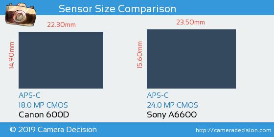 Canon 600D vs Sony A6600 Sensor Size Comparison
