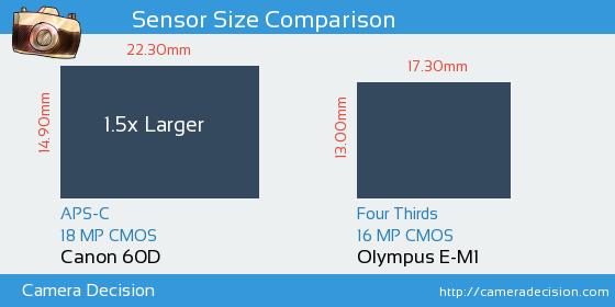 Canon 60D vs Olympus E-M1 Sensor Size Comparison