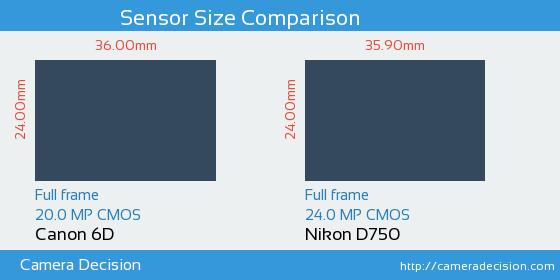 Canon 6D vs Nikon D750 Sensor Size Comparison