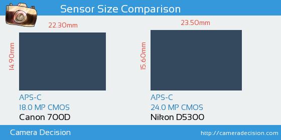 Canon 700D vs Nikon D5300 Sensor Size Comparison