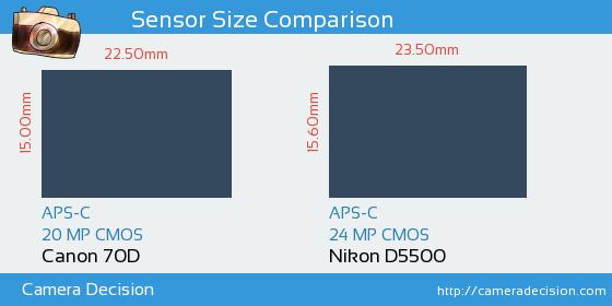 Canon 70D vs Nikon D5500 Sensor Size Comparison