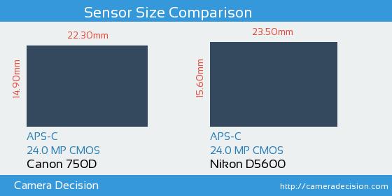 Canon 750D vs Nikon D5600 Sensor Size Comparison