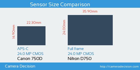 Canon 750D vs Nikon D750 Sensor Size Comparison