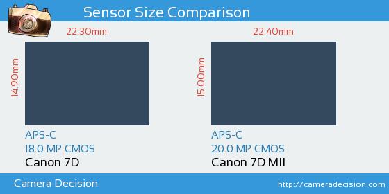 Canon 7D vs Canon 7D MII Sensor Size Comparison