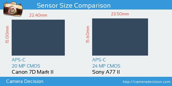 Canon 7D MII vs Sony A77 II Sensor Size Comparison