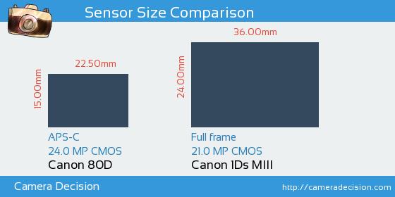 Canon 80D vs Canon 1Ds MIII Sensor Size Comparison