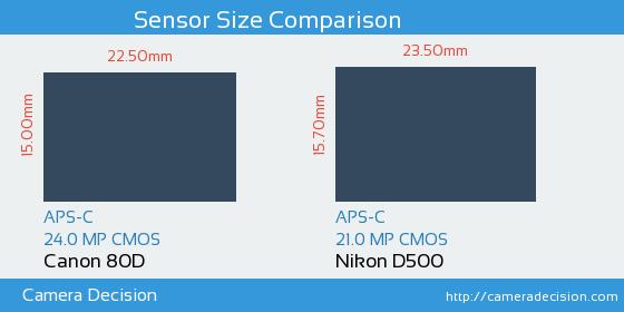 Canon 80D vs Nikon D500 Sensor Size Comparison