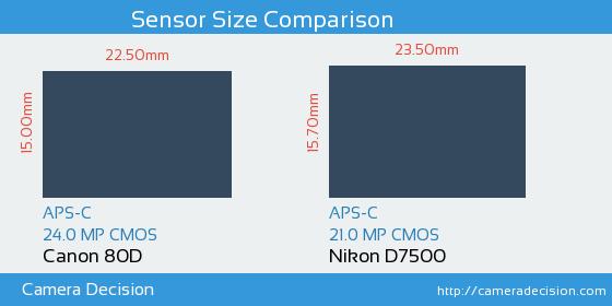 Canon 80D vs Nikon D7500 Sensor Size Comparison