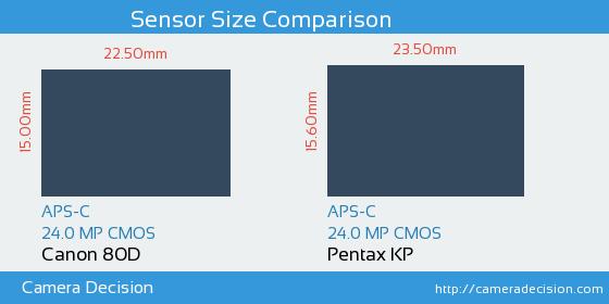 Canon 80D vs Pentax KP Sensor Size Comparison