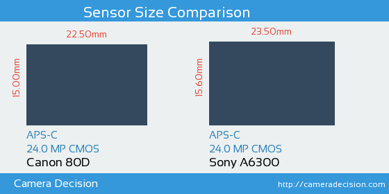 Canon 80D vs Sony A6300 Sensor Size Comparison