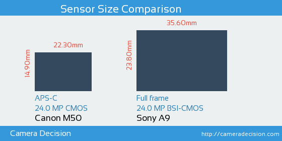 Canon M50 vs Sony A9 Sensor Size Comparison
