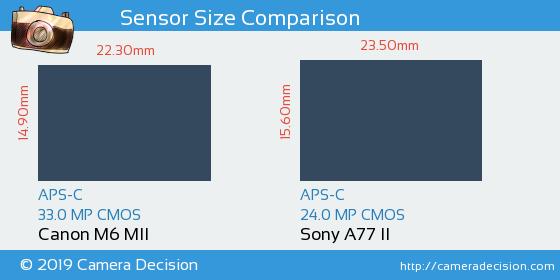 Canon M6 MII vs Sony A77 II Sensor Size Comparison