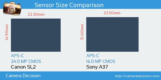 Canon SL2 vs Sony A37 Detailed Comparison
