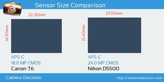 Canon T6 vs Nikon D5500 Sensor Size Comparison