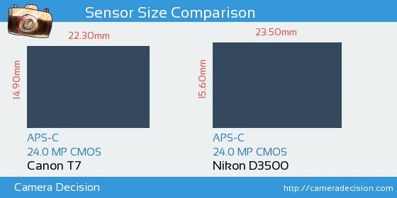 Canon T7 vs Nikon D3500 Sensor Size Comparison