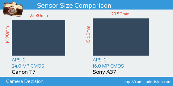 Canon T7 vs Sony A37 Sensor Size Comparison