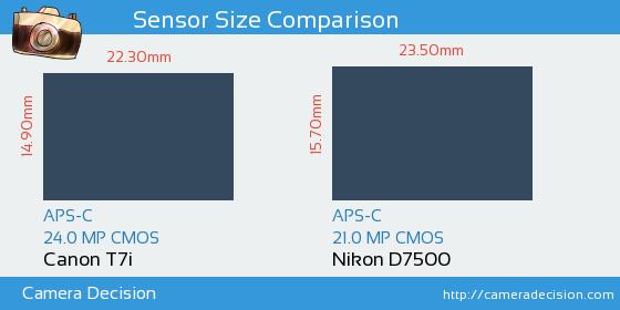 Canon T7i vs Nikon D7500 Sensor Size Comparison