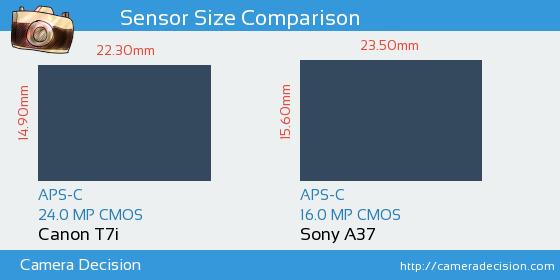 Canon T7i vs Sony A37 Sensor Size Comparison