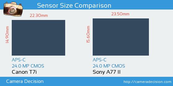 Canon T7i vs Sony A77 II Sensor Size Comparison