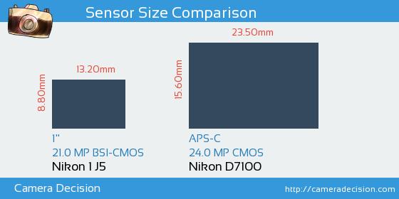 Nikon 1 J5 vs Nikon D7100 Sensor Size Comparison