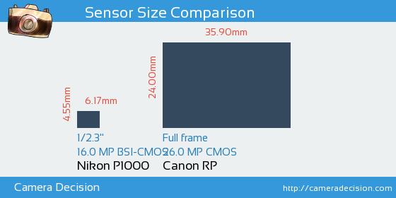 Nikon P1000 vs Canon RP Sensor Size Comparison
