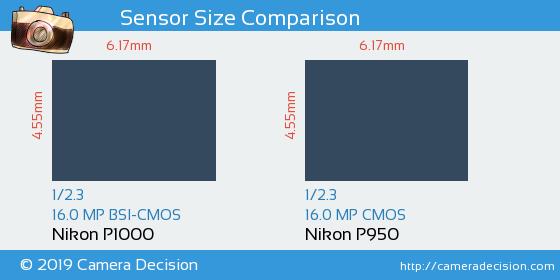 Nikon P1000 vs Nikon P950 Sensor Size Comparison