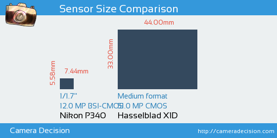 Nikon P340 vs Hasselblad X1D Sensor Size Comparison
