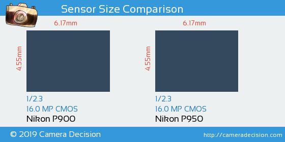 Nikon P900 vs Nikon P950 Sensor Size Comparison
