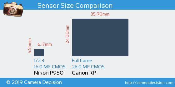 Nikon P950 vs Canon RP Sensor Size Comparison