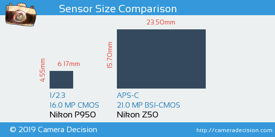 Nikon P950 vs Nikon Z50 Sensor Size Comparison