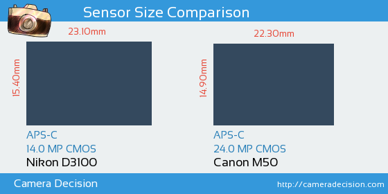 Nikon D3100 vs Canon M50 Sensor Size Comparison