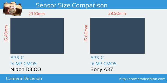 Nikon D3100 vs Sony A37 Sensor Size Comparison