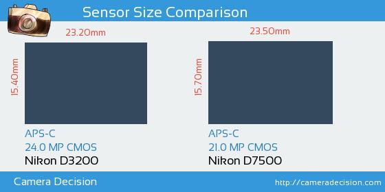 Nikon D3200 vs Nikon D7500 Sensor Size Comparison