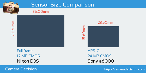 Nikon D3S vs Sony A6000 Sensor Size Comparison