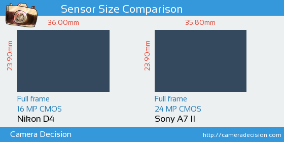 Nikon D4 vs Sony A7 II Sensor Size Comparison