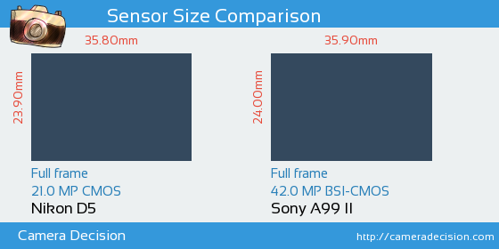 Nikon D5 vs Sony A99 II Sensor Size Comparison