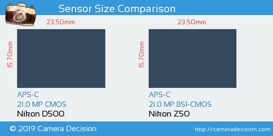 Nikon D500 vs Nikon Z50 Sensor Size Comparison
